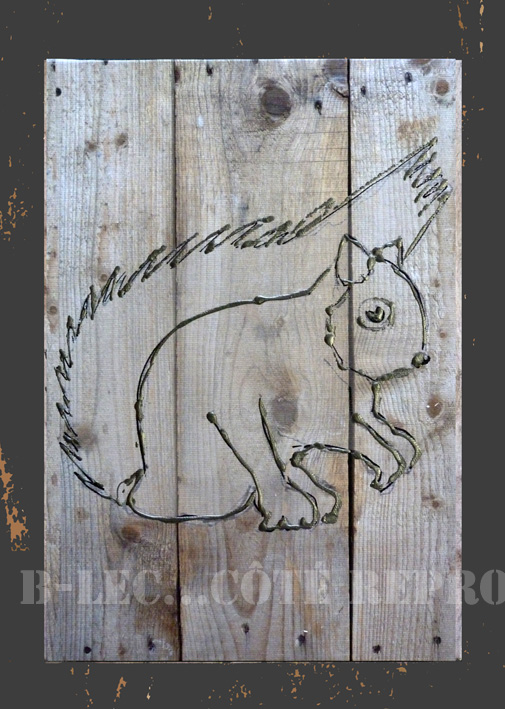 ecureuil01