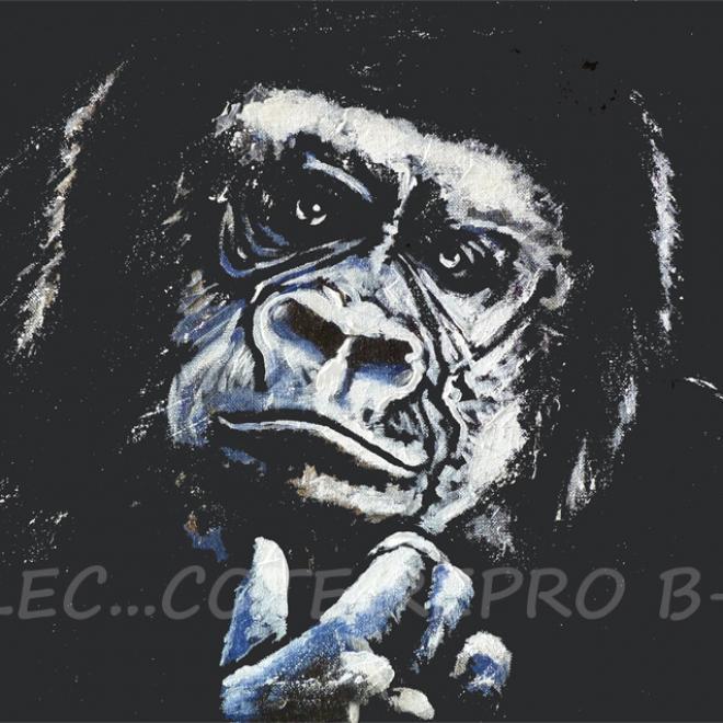 gorille01