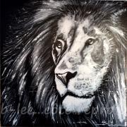 lion01