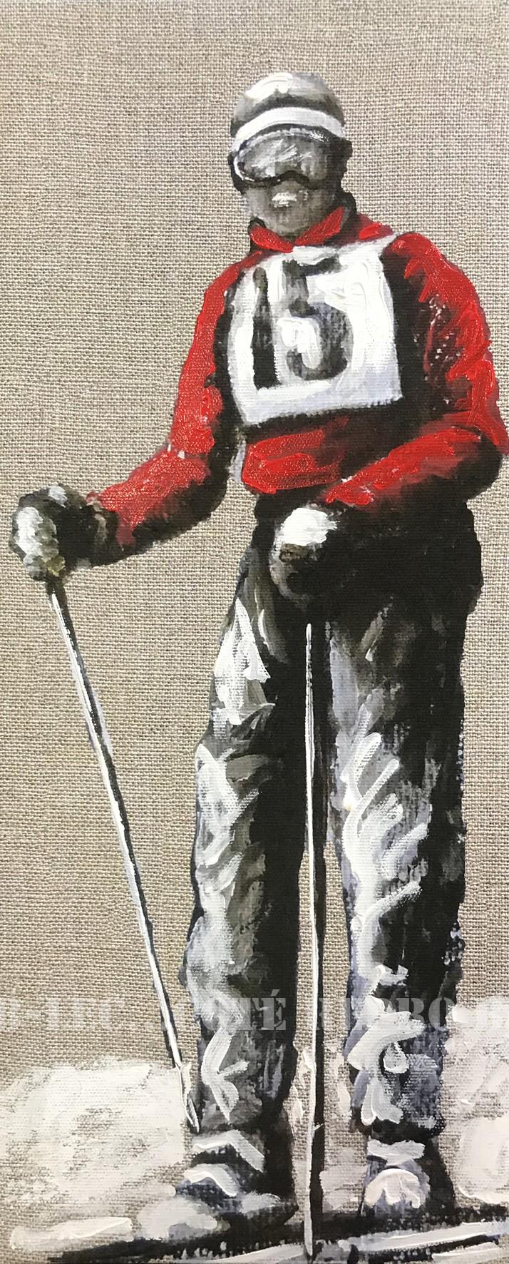 Ski15
